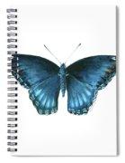 113 Brenton Blue Butterfly Spiral Notebook