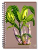 Orchid Vintage Print On Colored Paperboard Spiral Notebook