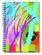 12-5-2011habcdefghijklmnopqrtu Spiral Notebook