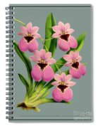 Orchid Vintage Print On Tinted Paperboard Spiral Notebook