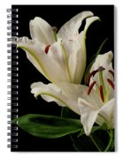 White Lily On Black. Spiral Notebook