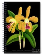 Vintage Orchid Print On Black Paperboard Spiral Notebook