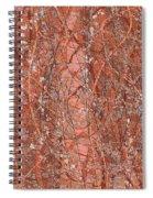 1966 Spiral Notebook