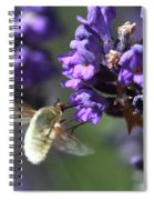 Fly Bee Spiral Notebook