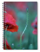 Red Corn Poppy Flowers Spiral Notebook