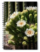 Saguaro Blossoms  Spiral Notebook