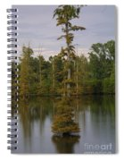 Tennesse Cypress In Wetland  Spiral Notebook