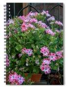 Variegated Spiral Notebook