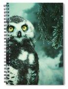 Winter Owl Spiral Notebook