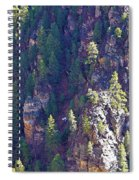 2014 Valentine Mountain Trip Spiral Notebook
