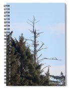 Ruby Beach Sunshine Spiral Notebook