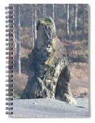 Ruby Beach Sunshine Spiral Notebook