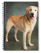 Portrait Of A Labrador Mixed Dog Spiral Notebook