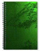 4-26-2009abcdefghi Spiral Notebook