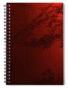 4-26-2009abcdefghijklmno Spiral Notebook