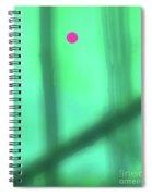 4-6-2009abcdef Spiral Notebook
