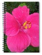Bright Pink Hibiscus Spiral Notebook