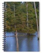 Tennesse Cypress In Wetland  Spiral Notebook