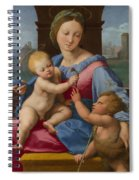 The Garvagh Madonna  Spiral Notebook