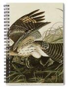 Winter Hawk  Spiral Notebook