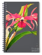 Orchid Old Print Spiral Notebook