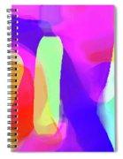 6-18-2008ca Spiral Notebook