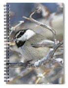 Mountain Chickadee Spiral Notebook