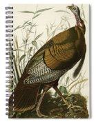 Wild Turkey  Spiral Notebook