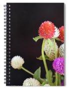 7191-multicolor Spiral Notebook
