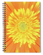 7289-yelow Gerber Spiral Notebook