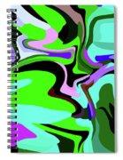 9-8-2008abcdef Spiral Notebook