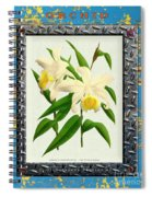 Orchid Framed On Weathered Plank And Rusty Metal Spiral Notebook