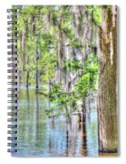A Beautiful Day In The Bayou Spiral Notebook
