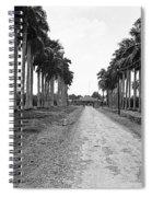 A Big Pathway Spiral Notebook
