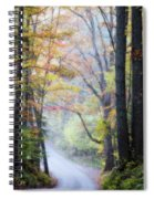 A Canopy Of Autumn Leaves Spiral Notebook