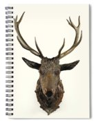 A Carved Wooden Red Deer Trophy With Red Deer Antlers, 19th Century Spiral Notebook