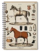 A Chromolithograph Of Horses With Antique Horseback Riding Equipments   1890  Spiral Notebook