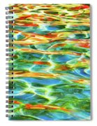 A Feast Of Colours Spiral Notebook