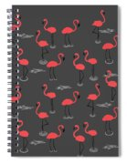 A Flamboyance Of Flamingos  Spiral Notebook