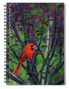 A Flash Of Red Spiral Notebook