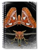 A Is For Atlas Moth Spiral Notebook