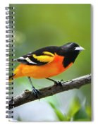A Look To Remember Spiral Notebook