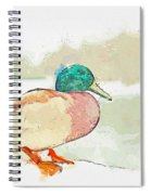 A Migrating Loon, Oslo, Norway -  Watercolor By Adam Asar Spiral Notebook