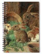 A Mother Rabbit And Her Young Spiral Notebook