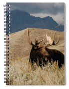 A Really Big Moose Spiral Notebook