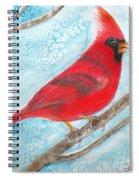 A Red Bird  Spiral Notebook