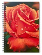 A Single Rose Spiral Notebook