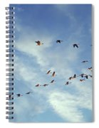 A Skein Of Canada Geese Spiral Notebook