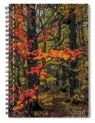 A Time In The Woods Spiral Notebook