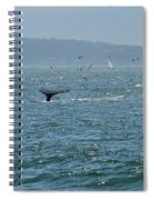 A Whale's Tail Above Water With Sail Boat In The Background Spiral Notebook